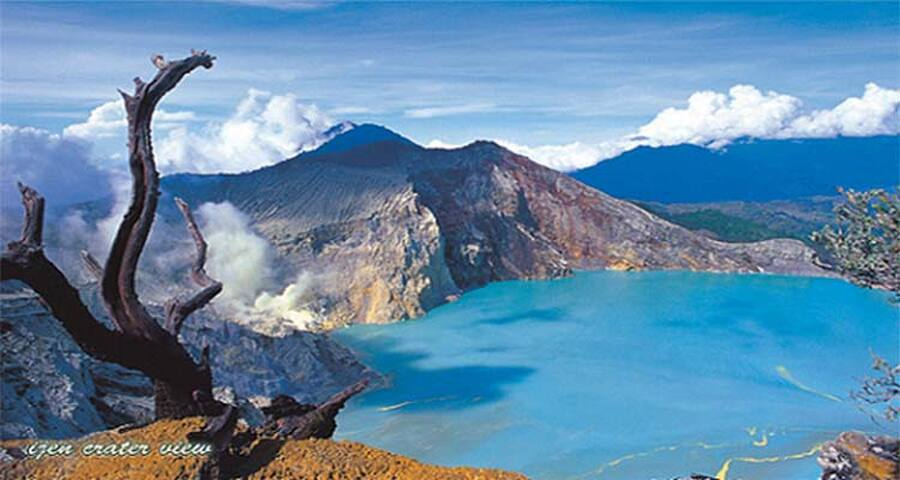 IJEN HOUSE AND TOUR SERVICE