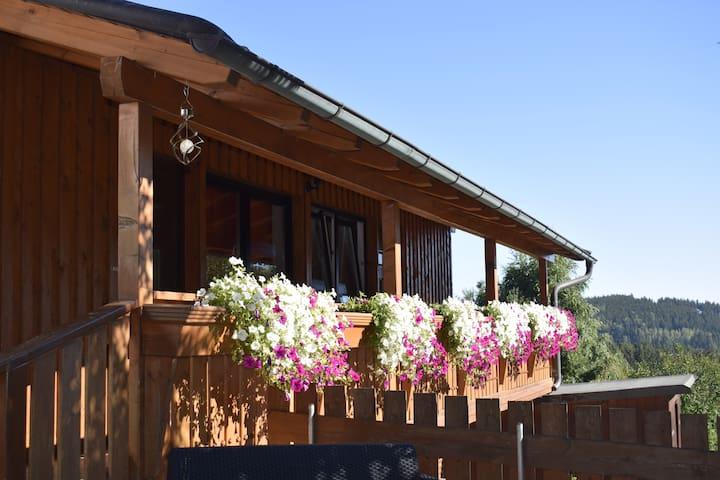 Ferienwohnungen am Burgberg (Lichtenberg), Appartement Birke(32qm) mit Dachterrasse