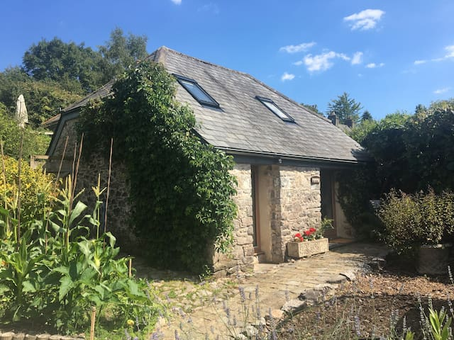 Cosy eco-studio in the heart of Dartington