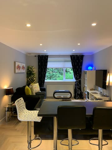 4* Boswell 1-Bedroom Apartment (Lower) - Glasgow