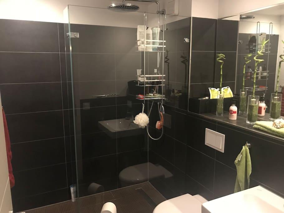 Duschbad mit begehbarer Dusche
