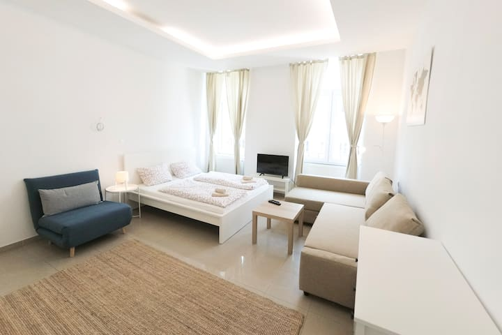 Vienna Living Apartments - Dammstraße Top 18