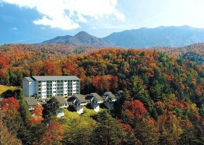 One Bedroom Luxury Town Home, Gatlinburg, TN (A528)