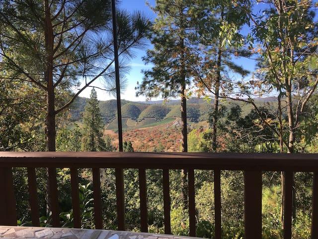 Suite w/views in Murphys