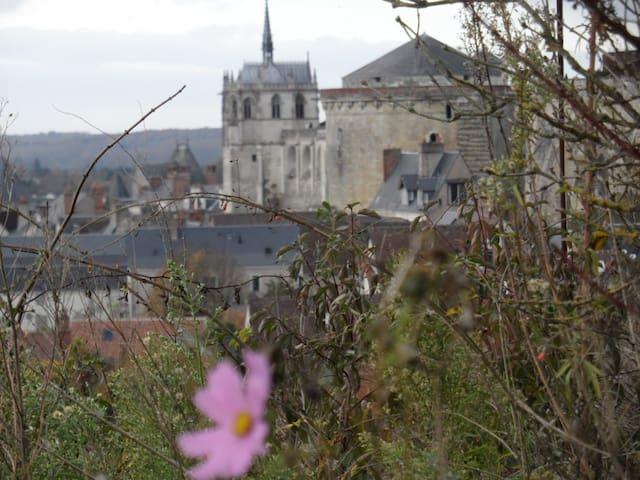 vue sur la chapelle du château royal depuis le jardin photo  zoomée