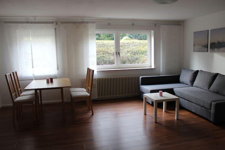 Großzügige, helle Wohnung nahe Freiburg - Emmendingen - Lägenhet