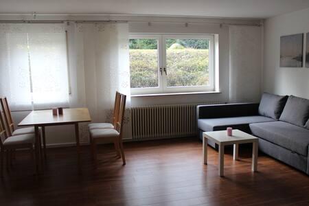 Großzügige, helle Wohnung nahe Freiburg - Emmendingen - Leilighet