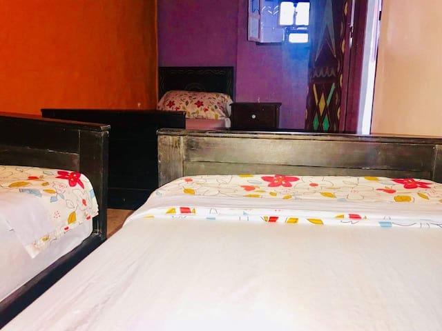 DREAM SURF SCOOL (dortoir 3 beds) + breakfast