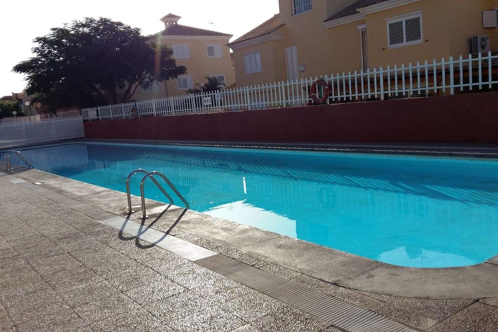 Vista de la piscina de adultos 1