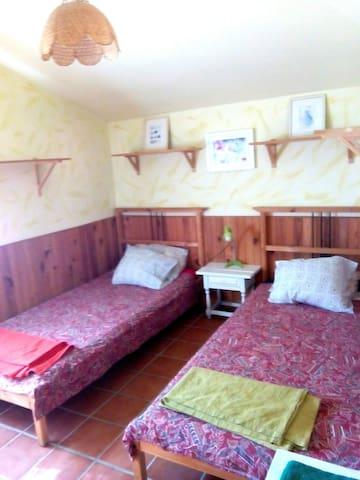 Habitación con dos camas individuales y vistas al jardín