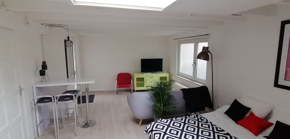Cozy apartment 20minutes from Amsterdam