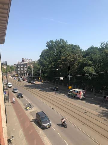 Vondelpark view