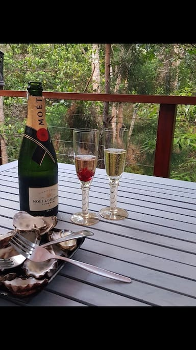 Photo taken by guests enjoying champagne & oysters on private forest deck