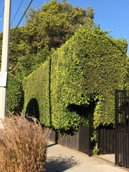 Private, hedged, gated entrance