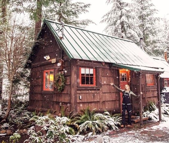 The Ohana Hot Springs Cabin at Mt. Rainier