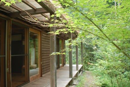 元集落のあった荒廃林を再生した豊かな森に佇むログハウス風の一棟貸一軒宿 森の駅