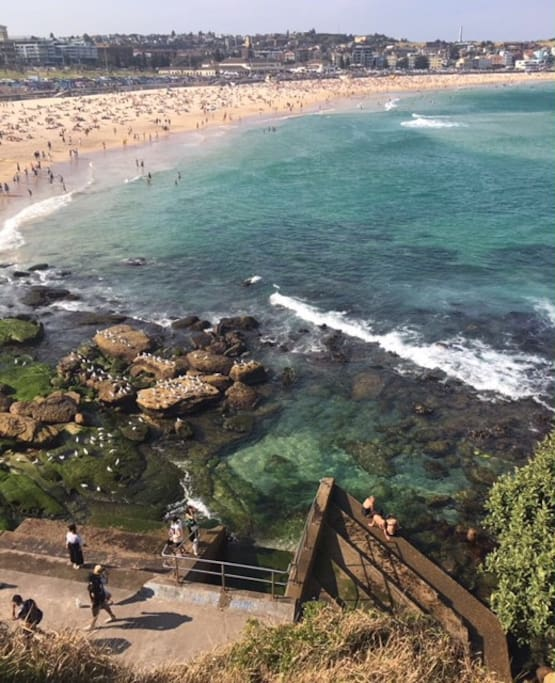 Less than 10 minutes away from Coogee Beach