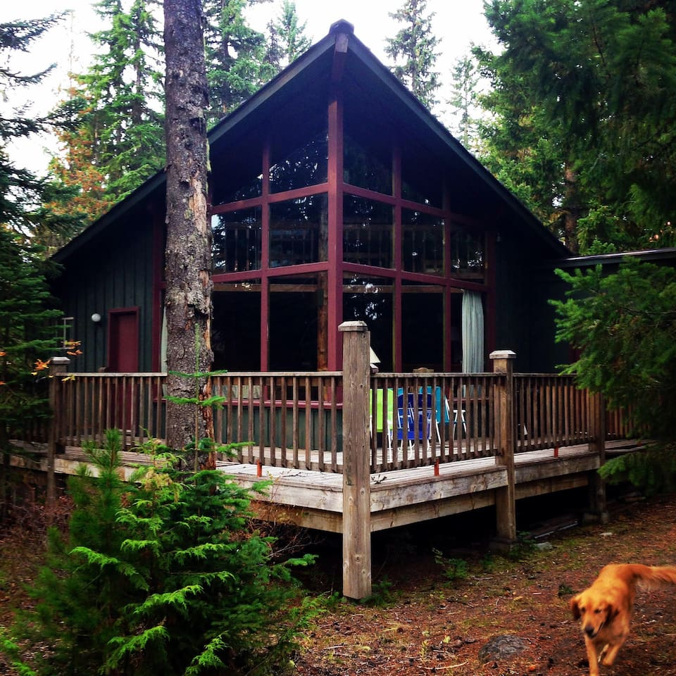 View of cabin, with Mount Hood at my back.