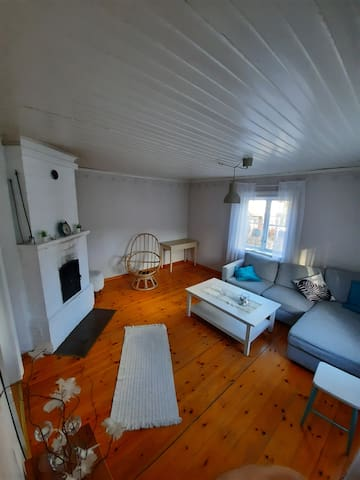 Vardagsrum med öppen spis och bäddsoffa