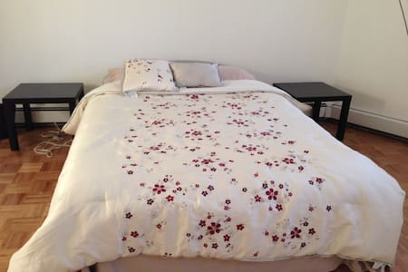 Room in Harvard Square 哈佛客棧 - Cambridge