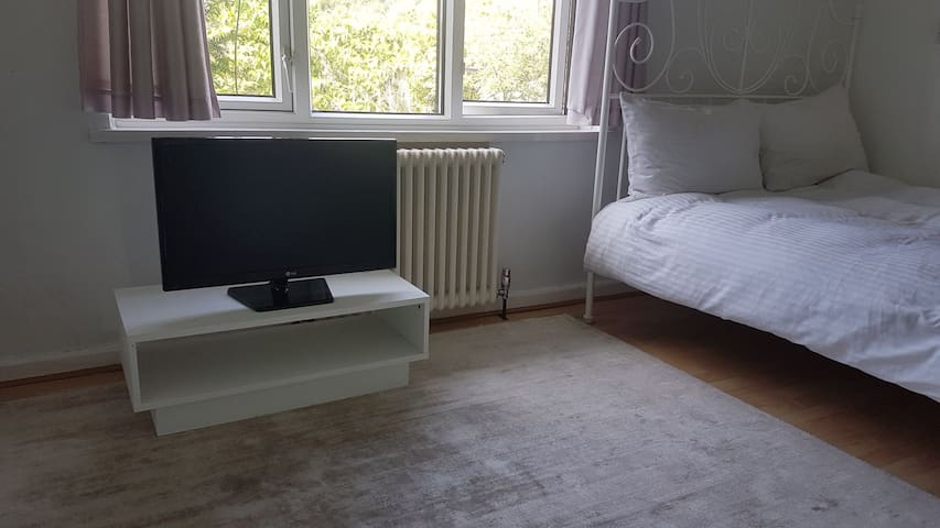 Cheap great looking spot close to central London