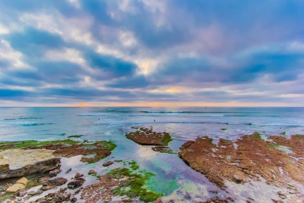 Walk a few blocks to Sunset Cliffs and enjoy some spectacular sunset views