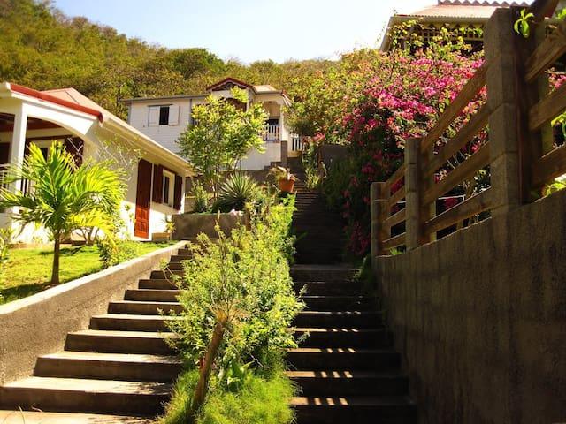 Villa - GP - House