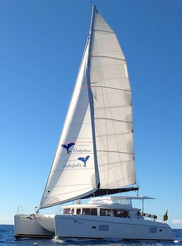 Übernachtung auf einem Lagoon 420 Katamaran - Andratx - 船
