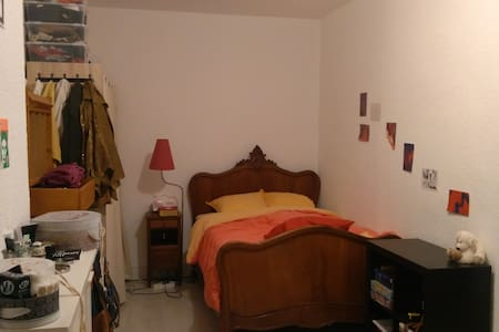 Joli appartement équipé, proche Carnot et Jacquard - Saint-Étienne - Daire