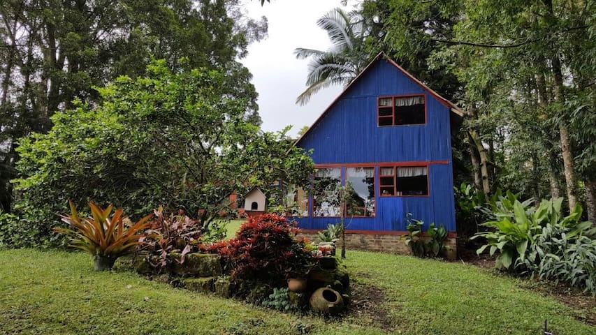 Cabaña de Madera en el Campo - Cachipay - Bed & Breakfast