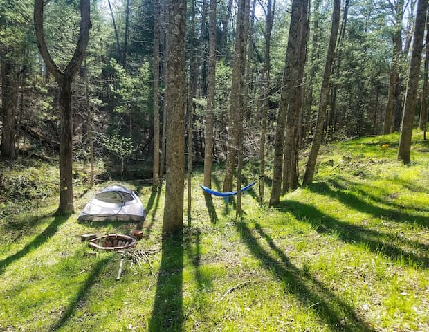 3 tent campsites available with private fire pits