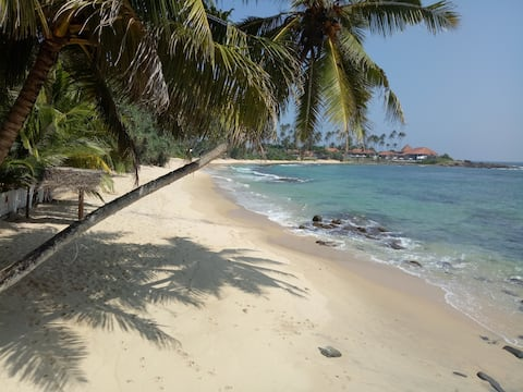 Coconut Palm Guesthouse and Restaurant