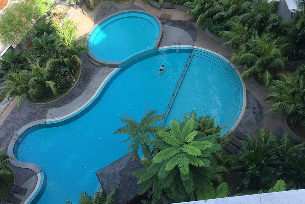 the swimming pool from above