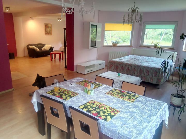 Cozy apartament near Książ Castle