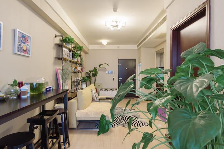 Zebra-entire place整套房子 地铁站1分钟 便利社区BDA 邻近国贸CBD天坛 - Beijing - Appartement