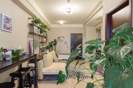 Zebra-entire place整套房子 地铁站1分钟 便利社区BDA 邻近国贸CBD天坛 - Beijing