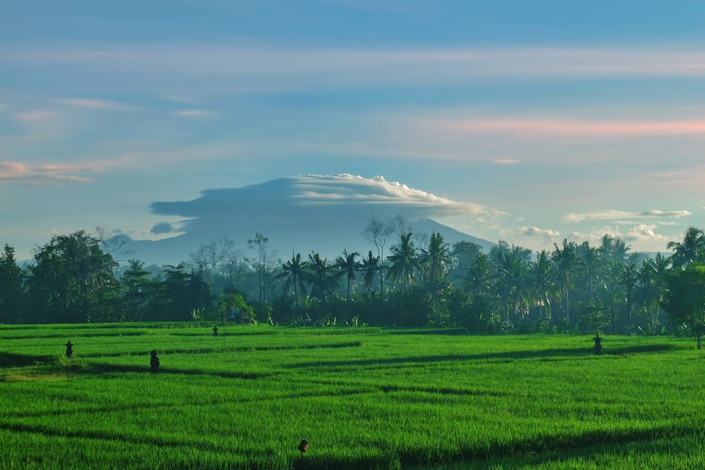 Sunrise of the Mt Agung with rice field views