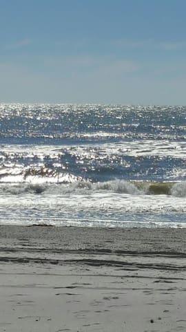 WOW! Sale! Across St. to Beach Retro Condo Love It - Madeira Beach - Apto. en complejo residencial