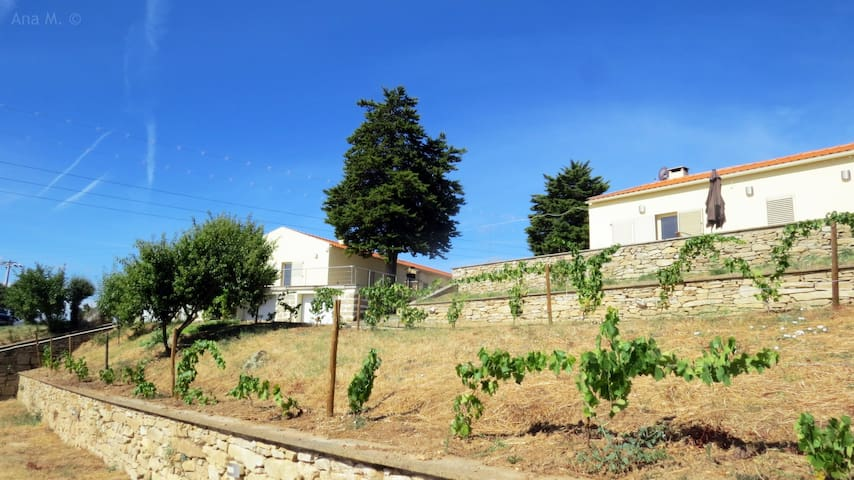 house 2 rooms in Douro River - Bemposta - Townhouse