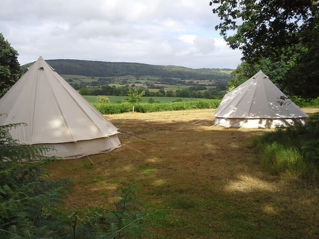 Wild Woodland Camping - Quantock Bell Tent