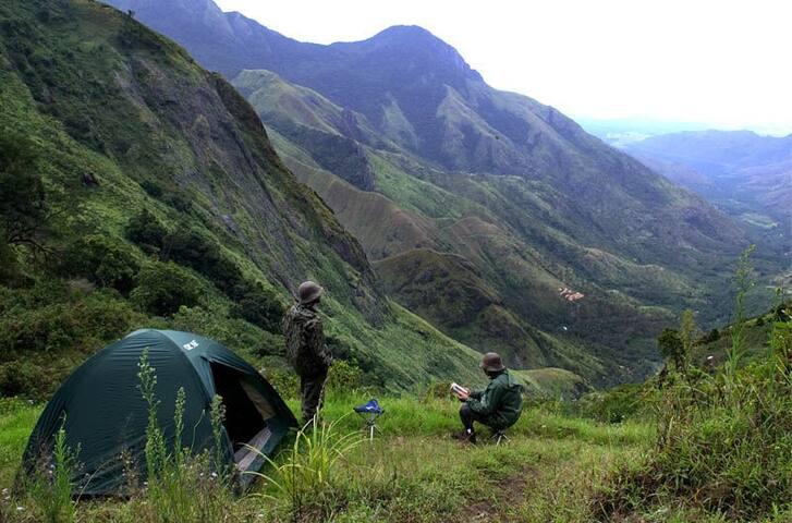 Yellapetty Tent Camp