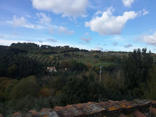 Organic farm in beautiful Tuscan countryside - Castagneto Carducci