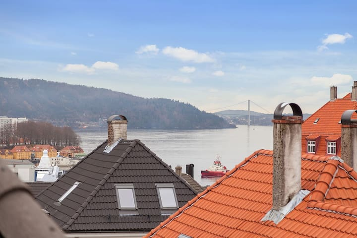 Luminous roof-top in Bergen w sea view terrace