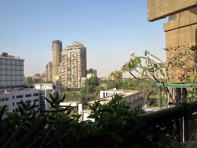 Cairo Center. Cozy urban jungle