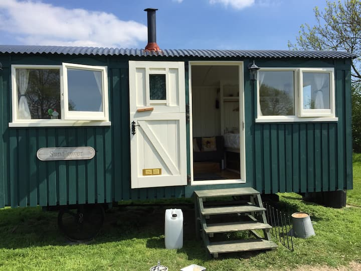 Shepherds hut (SF) at Bluecaps Farm, Cousley Wood.