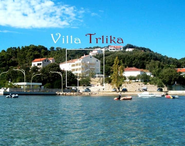 Villa Trlika - small studio apt.