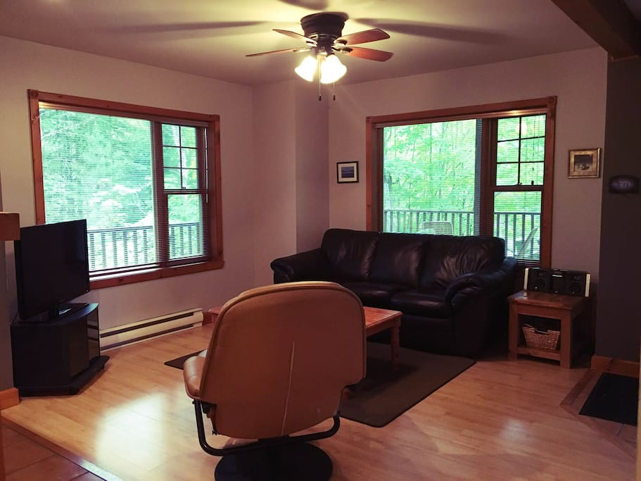 Spacious living room with sofabed.  Surrounded by trees outside both windows.