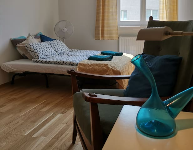 Cosy vintage apartment in the center of Vienna!