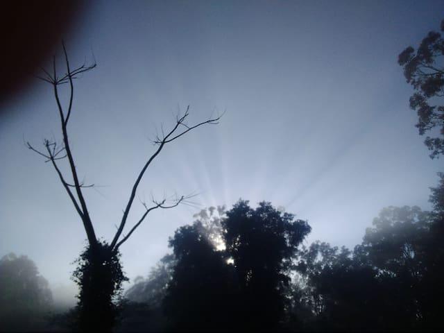 2br home, star gazing, waterholes, rainforest