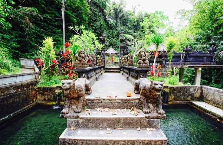 Tegallalang Pool Villa Ubud 2BR great views